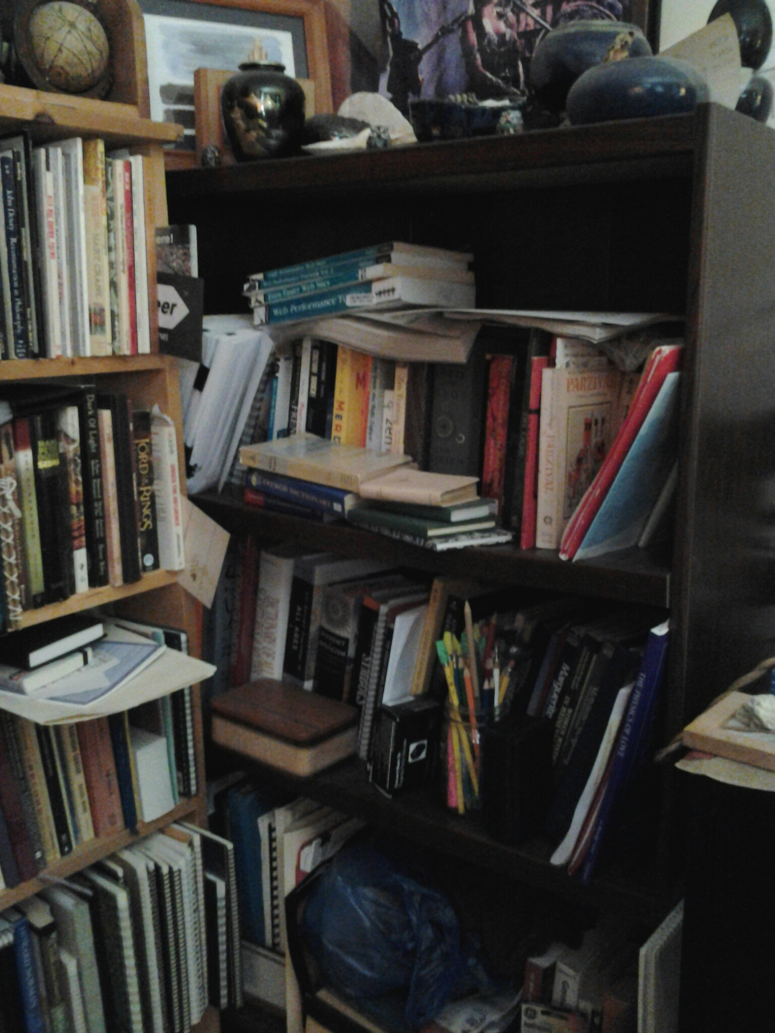 Bookshelf 4 - Long-neglected collection of Medieval, alchemy, esoterica