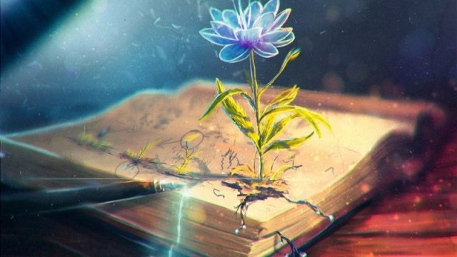 flower growing out of a book