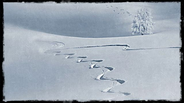 snow landscape with animal tracks
